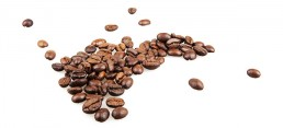 coffee shop franchise for sale